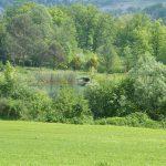Ecosistemi e Reti Ecologiche